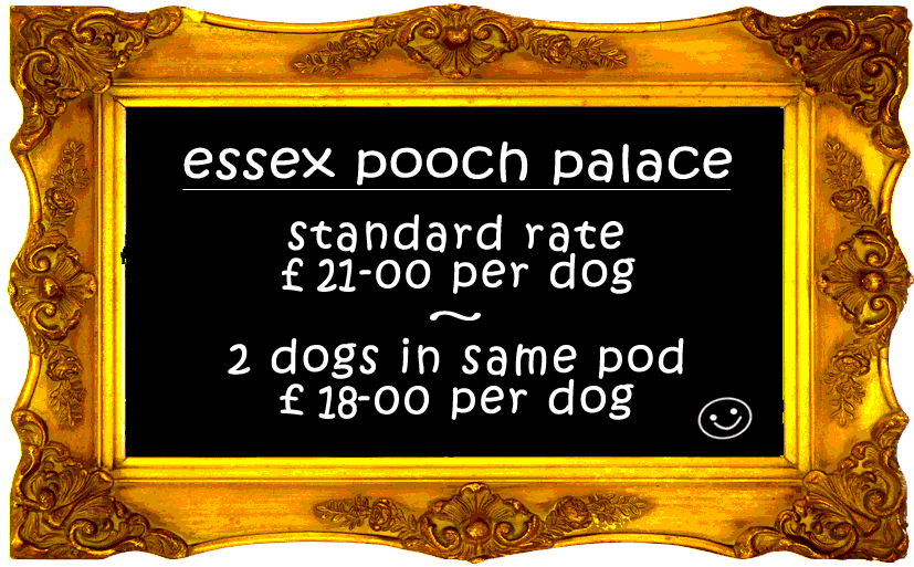 Essex Pooch Palace Luxury Dog Boarding Kennels